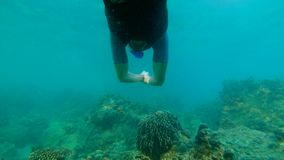 Slowmotion shot of a young man snorkeling and diving dip into sea.  stock video footage