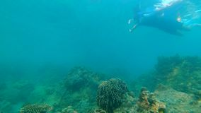 Slowmotion shot of a young man snorkeling and diving dip into sea.  stock footage