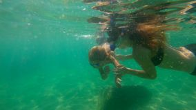 Slowmotion shot of a young woman and her little son snorkeling in a sea.  stock footage