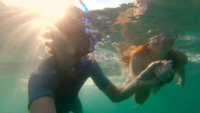 Slowmotion shot of a young woman and man snorkeling in a tropical sea.  stock video footage