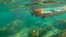 Slowmotion shot of a young woman snorkeling in a sea. Slowmotion shot of a young woman snorkeling in a sea stock video