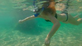 Slowmotion shot of a young woman snorkeling in a sea.  stock video