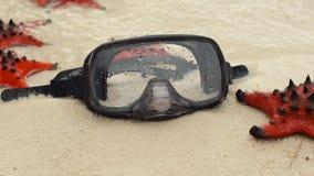 Slowmotion skott av den röda sjöstjärna- och dykningmaskeringen på stranden lager videofilmer