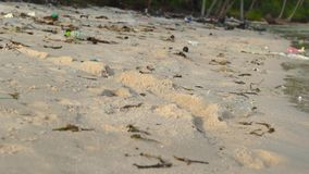 Slowmotion steadycam shot of a beach with fine white sand covered with garbage.  stock footage
