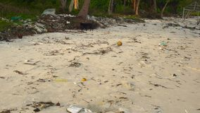 Slowmotion steadycam shot of a beach with fine white sand covered with garbage. Camera tilts down from a palm tree to. Asand with garbage stock footage