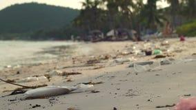 Slowmotion steadycamschot van een strand met fijn wit die zand met huisvuil wordt behandeld stock footage
