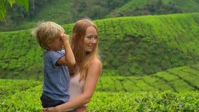 Slowmotion strzał młoda kobieta i jej syna odwiedzać średniogórze herbaciane plantacje Świeży, herbaciany pojęcie, zbiory