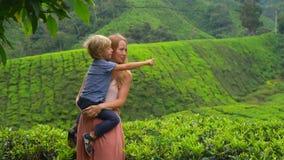 Slowmotion strzał młoda kobieta i jej syna odwiedzać średniogórze herbaciane plantacje Świeży, herbaciany pojęcie, zdjęcie wideo