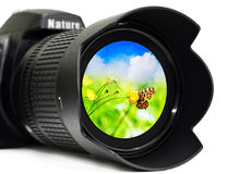 SLR camera lens. Camera lens with butterfly inside, isolated on white background Stock Image