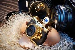 SLR-camera's en compact als ouders en baby in nest Royalty-vrije Stock Afbeeldingen