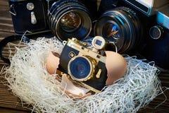 SLR-camera's en compact als ouders en baby in nest Stock Fotografie