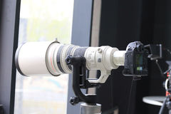 SLR kameror royaltyfri fotografi