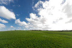 Slösa skyen och vitmolngräs Arkivbilder