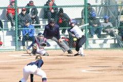 SLU-het Softball 2019 I van Vrouwen royalty-vrije stock foto