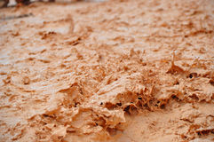 Sludge. After rain at Bryce Canyon Stock Images
