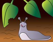 Slug do jardim ilustração stock