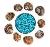 Slug pellets and snail shells isolated on white Royalty Free Stock Image