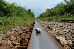 Slug shell on railways Stock Images