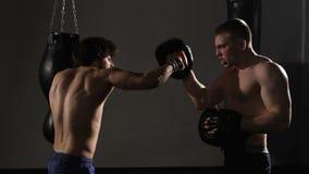 Slug ung kickboxer fullgör slag med lagledaren arkivfilmer