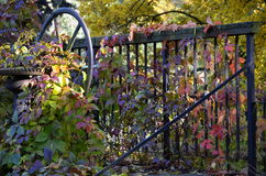 Sluice gate in the park Royalty Free Stock Images