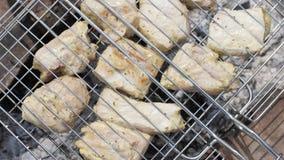 Sluit chiken omhoog vlees op barbecue tijdens de zomer het kamperen wordt geroosterd die stock video