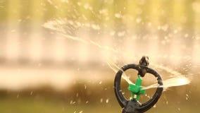 Sluit de nevel van de watersproeier omhoog het water geven, warme toon. stock footage