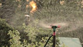 Sluit de nevel van de watersproeier omhoog het water geven stock videobeelden