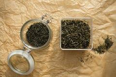 Sluit fesh omhoog groene theebladen met ochtendgloed Stock Afbeelding