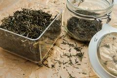 Sluit fesh omhoog groene theebladen met ochtendgloed Royalty-vrije Stock Afbeeldingen