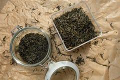 Sluit fesh omhoog groene theebladen met ochtendgloed Stock Foto