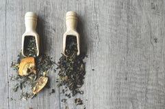 Sluit fesh omhoog groene theebladen met ochtendgloed stock foto's