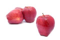 Sluit omhoog één rode appel met selectieve nadruk Royalty-vrije Stock Afbeelding