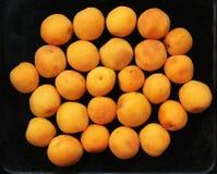 Sluit omhoog abrikoos Royalty-vrije Stock Foto's