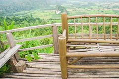 Sluit omhoog bamboebank bij heuvelbovenkant royalty-vrije stock foto