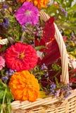 Sluit omhoog beeld van briljant gekleurde bloemen Stock Foto