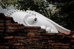 Sluit omhoog beeld van het hoofd van Boedha achter de oude bakstenen muur Stock Foto