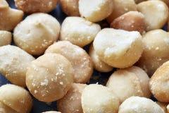 Sluit omhoog beeld van macadamia noten Royalty-vrije Stock Afbeeldingen