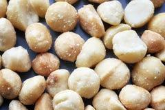 Sluit omhoog beeld van macadamia noten Royalty-vrije Stock Afbeelding