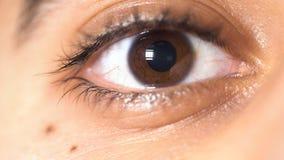 Sluit omhoog beeld van mooi bruin oog van een jonge mens, het concept van het gezichtsdetail media De leerling van mannelijk oog  stock fotografie