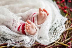 Sluit omhoog beeld van nieuw - geboren babyvoeten, Kerstmistijd Royalty-vrije Stock Afbeeldingen