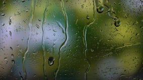 Sluit omhoog beeld van regendalingen die op een venster vallen Onscherpe achtergrond stock video