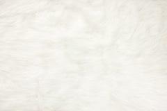 Sluit omhoog bij witte de textuurachtergrond van de bontstof Stock Foto's