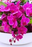Sluit omhoog de purpere achtergrond van orchideebloemen stock afbeelding