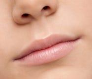 Sluit omhoog de streek van de lippenmake-up. Macro Stock Afbeeldingen