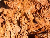 Sluit omhoog dode bruine houten stomp het rotten gebarsten textuur backgroun stock afbeelding