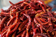 Sluit omhoog droge rode Spaanse pepers Stock Foto
