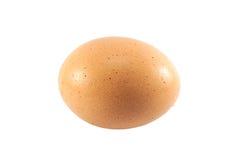 Sluit omhoog een ei Stock Foto
