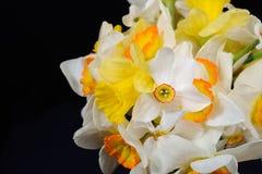 Sluit omhoog foto van boeket van wit en geel gele narcissen geplaatst o Stock Foto