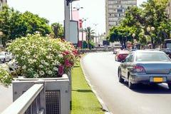 Sluit omhoog geconcentreerd bloembed op de het verdelen strook van de weg van het stadsverkeer Geen actieve opstopping in straatw royalty-vrije stock foto's