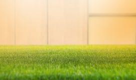 Sluit omhoog groen grasgebied met de achtergrond van de onduidelijk beeldmuur De lente en de zomerconcept, Mooie aard, zonneschij royalty-vrije stock afbeeldingen